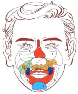 riflessologia-facciale1
