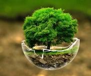 corso di introduzione alla naturopatia